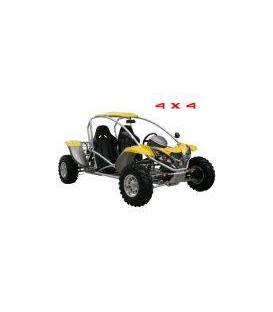 Buggy 500cc 4x4
