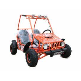 ATV - ATV BUGGY 125CC NITRO Sunway SPIDER - 3GR