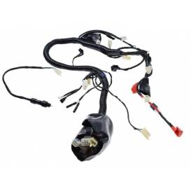 Electrical installation Shineray 250STIX