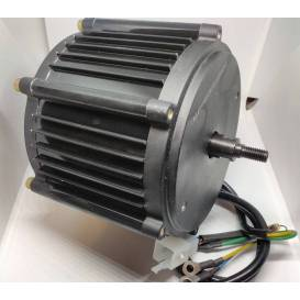 Electric motor 48V 1000W for electric Buggy