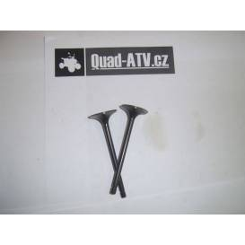 Intake + exhaust valves 250cc type2