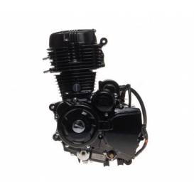 Motor Shineray 250cc STXE 167FMM